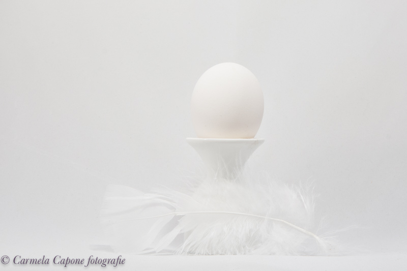 heavenly egg 20180118 1533119813