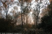 Oktober 2013 - Herfstfotografie